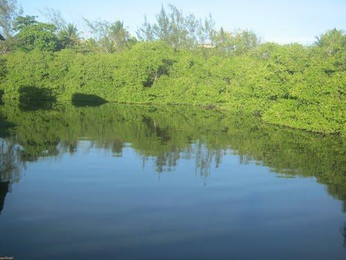 Autorizado o desassoreamento do Rio Jacaraípe