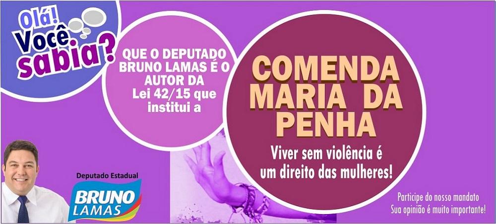NÃO A VIOLÊNCIA CONTRA A MULHER